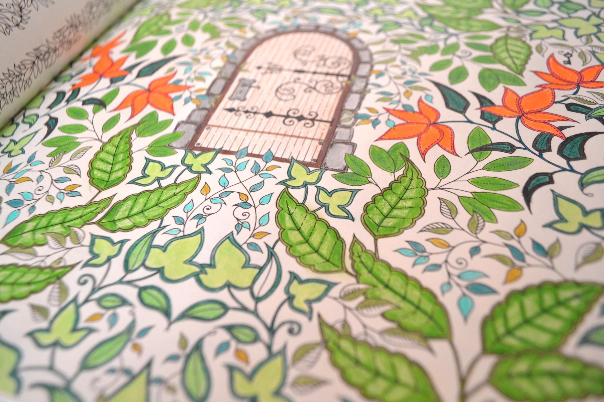 fotos jardim secreto:Tutorial para colorir livros? Fizeram um que é sensacional, veja aqui
