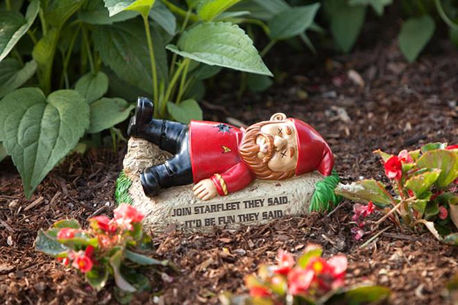 roubo de anao de jardim : roubo de anao de jardim:Anoes de jardim inspirados em Star Trek – para seu jardim ter vida
