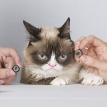 grumpy-cat-madame-tussauds